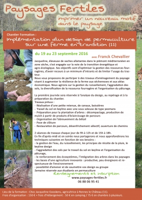 Chantier formation : implémentation d'un design de permaculture sur une ferme en transition (11)